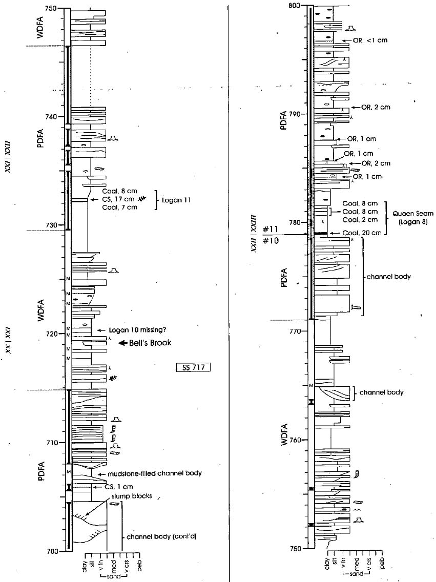 The Pennsylvanian Joggins Formation Of Nova Scotia Sedimentological 800 Wiring Diagram For Robert Display Large Image Figure 17