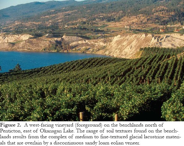 View of Geology and Wine 10: Use of Geographic Information