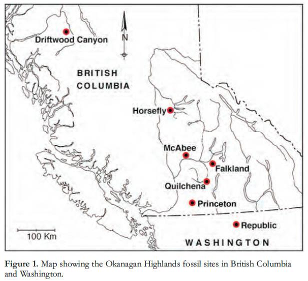 Great Canadian Lagerstatten 1 Early Eocene Lagerstatten